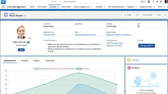 Salesforce Non-Profit UI
