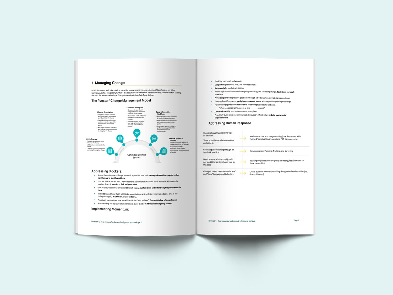 Salesforce Change Management document